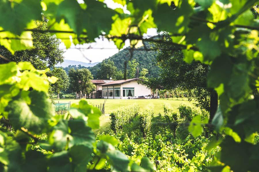 Villa-Giuliana-Cantina-Esterno